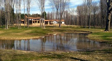 Dellagnese Woodland Pond